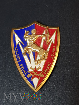 Pamiątkowa odznaka 74 Pułku Artylerii - Francja