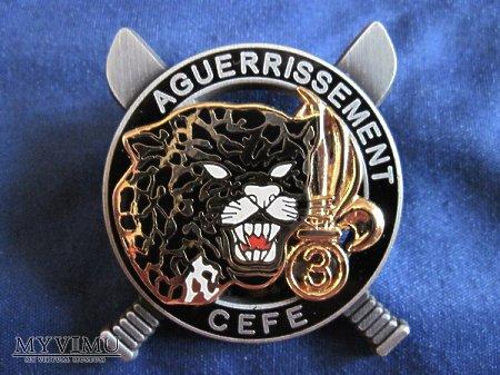 Odznaka C.E.F.E 3