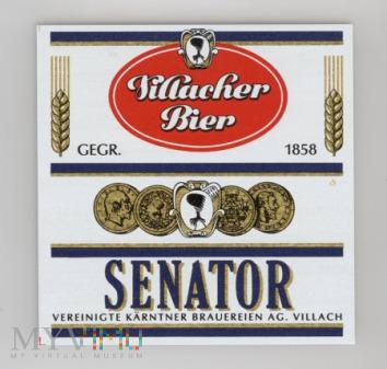 Villach, Senator
