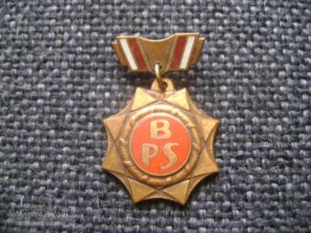 Brązowa odznaka BPS