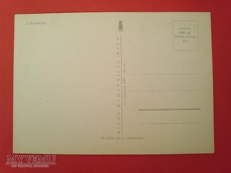 Duże zdjęcie 1963 nadobnica alpejska karta Maximum Maksimum