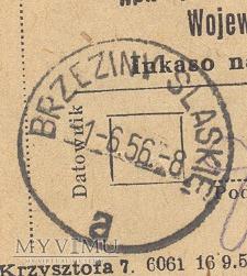 Datownik z Brzezin