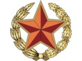 Zobacz kolekcję Białoruskie Siły Zbrojne