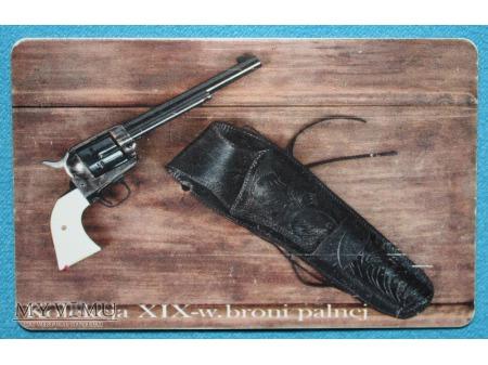Kolekcj XIX-w. broni palnej 3 (8)