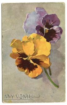 Catharina C. Klein kwiaty kompozycja artystyczna
