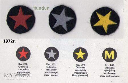 Oznaki klas specjalistów wojskowych MW
