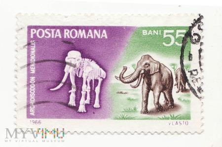 Znaczek pocztowy -Zwierzęta 46