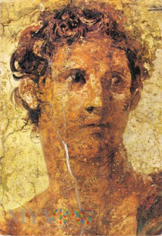 Theseus Killer of the Minotaur