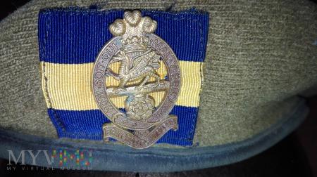Princess of Wales Royal Regiment
