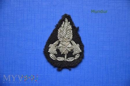 Ognik na naramienniki OSP haftowany bajorkiem