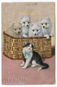 Kociak i pieski w koszyku - pocztówka