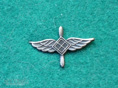 Korpusówka lotnictwa 1960