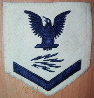US Navy Petty Officer 3rd class information system