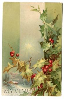 1904 Ostrokrzew pocztówka z Francji