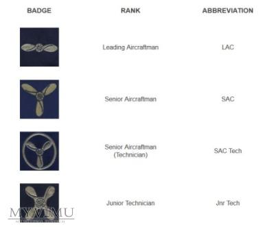 RAF - oznaka stopnia: Senior Aircraftman