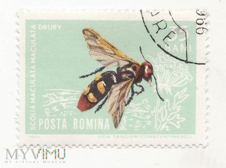 Znaczek pocztowy -Zwierzęta 48