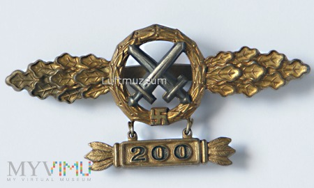 Fronflugspange für Schlachtflieger Gold 200