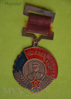 Hero meritorious statesman medal