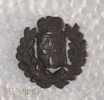 Carska nakładka na guzik z herbem Guberni Wolynski