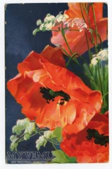 Catharina C. Klein maki kwiaty Flowers Fleurs