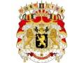Zobacz kolekcję Belgijskie Siły Zbrojne