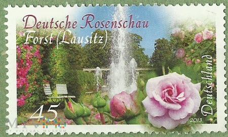 Rosenchau