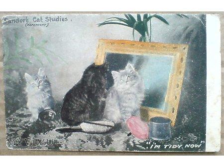 1905 Kociaki przed lustrem - Kocia toaleta Tuck's