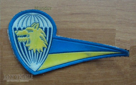 Ukraińska oznaka Aeromobilnych Wojsk na beret