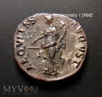 denar Nerwy