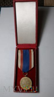 """Odznaka """"W Służbie Narodu"""""""