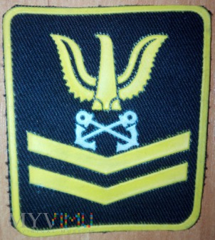 US Petty officer 2nd class