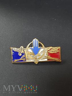 Odznaki Sił Bezpieczeństwa i Organów Scigania