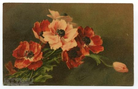Catharina C. Klein piękne kwiaty Flowers Fleurs