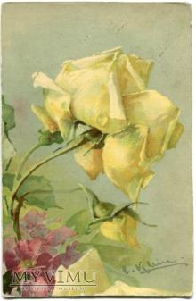 Catharina C. Klein Róże żółte kwiaty UPGRADED