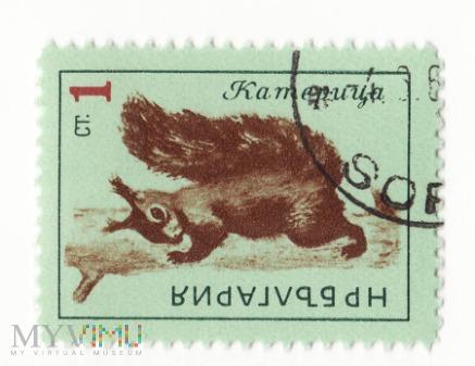 Znaczek pocztowy -Zwierzęta 52